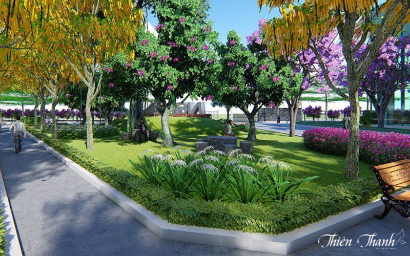thiết kế cây cảnh 1